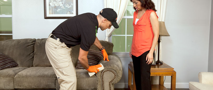 Louisville, KY carpet upholstery cleaning